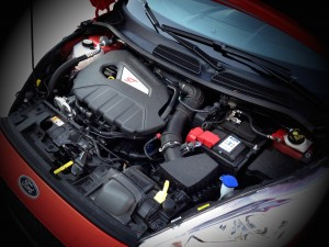 Ford Fiesta ST (source - ThrottleChannel.com) 037