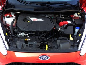 Ford Fiesta ST (source - ThrottleChannel.com) 038